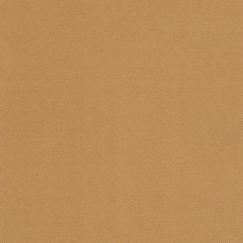 Cartenza-150-Camel